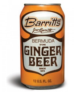 Ginger Beer - 6 Pack